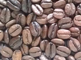 拿鐵咖啡-咖啡豆-咖啡熟豆區