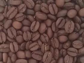 曼巴咖啡-咖啡豆-咖啡熟豆區