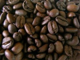 曼特寧-咖啡豆-咖啡熟豆區