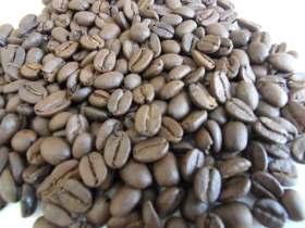 藍山-咖啡豆-咖啡熟豆區